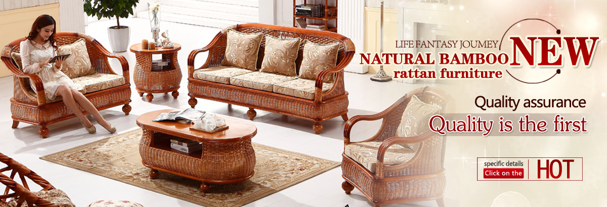 What Is The Palecek Furniture (Rattan +Wood Series)?